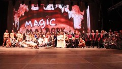 Magic Malbork 2014