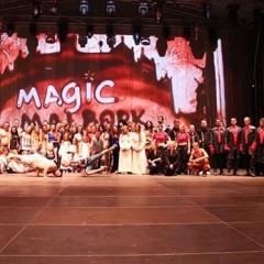 Magic Malbork 2014